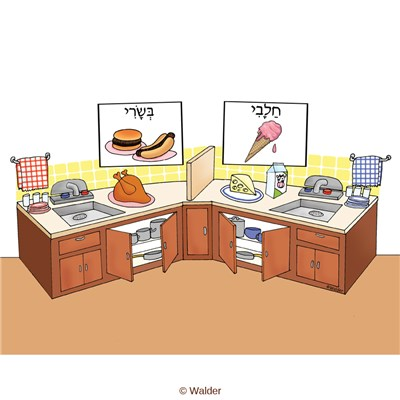 Kosher kitchen walder education for How to kosher your kitchen