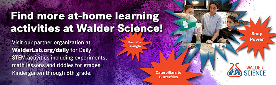 Walder Science Daily Stem Home Learning