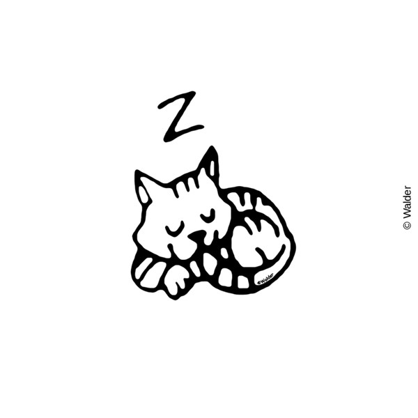 Cat: Sleeping