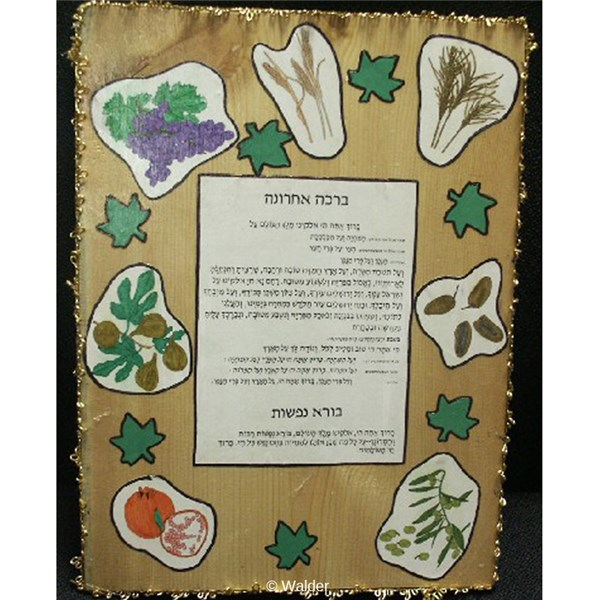 Brachah Mei�ein Shalosh Plaque with Shivas Haminim