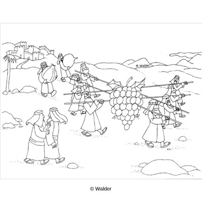 Parsha torah coloring pages   Coloring pages, Sketches, Male sketch   400x400