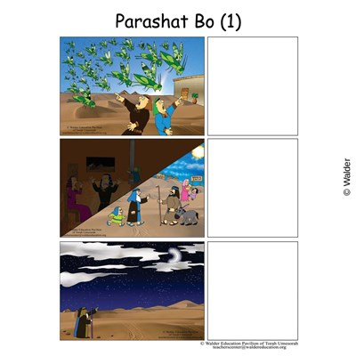 Parshas Bo Sequencing in English