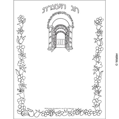 Chag Ha'atzeres, Aron Kodesh Floral Border Unlined