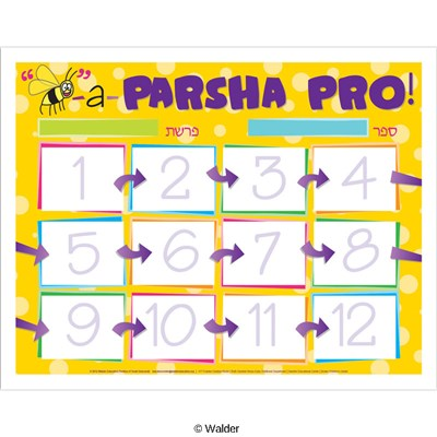 Parsha pro serious font main poster