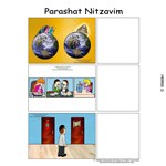 Parshas Nitzavim Sequencing in English
