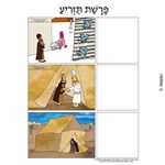 Parshas Tazria Sequencing in Hebrew and English