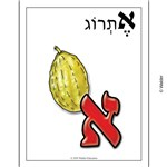 Colorful Print Alef Beis with Illustrations Sign