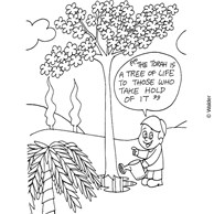 Torah is a Tree of Life