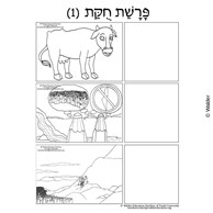 Parshas Chukas Sequencing in Hebrew and English