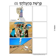 Parshas Behaaloscha Sequencing in Hebrew and English